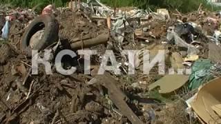 «Мусорные короли» спрятались от властей за горами отходов