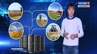 Новосибирские учёные предлагают создать единую цифровую платформу для российских фермеров