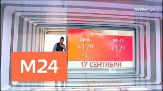 """""""Климат-контроль"""": какая погода ждет жителей столичного региона - Москва 24"""