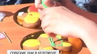 Второй день фестиваля «Дни Сербии в Черноземье» стал кулинарным