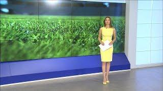 «Волгоград Арена» готова к матчу ЧМ