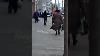 Собака попрошайка 3.4.2018 Ростов-на-Дону Главный