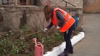 """Цветы высаживают во дворах специалисты """"Рембытстройсервиса"""" В Биробиджане(РИА Биробиджан)"""