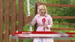 Земельный скандал в Переславском районе: жители утверждают, что остались без леса и дороги