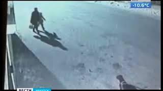 Жертвы пьянства за рулём  В Тулуне нетрезвый водитель покалечил женщину и насмерть задавил её собаку