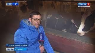 Кузбасские фермеры победили законы природы