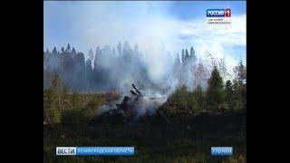 Вести Санкт-Петербург. Выпуск 17:00 от 12.10.2018