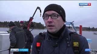 В Ладожское озеро выпустили палию