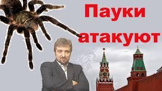 Россия Москва Возня ПАУКОВ за ВЛАСТЬ И. Дмитриев