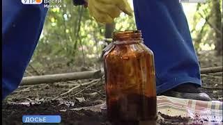 Иркутская область — на 46 м месте среди всех российских регионов по степени загрязнения почвы