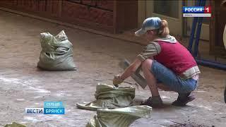 В Сельцо приступили к масштабному ремонту городского ДК