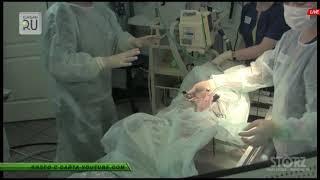 В Кургане прошла уникальная операция: жизнь маленькой собачки Джины спасена