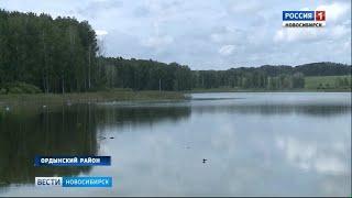В Новосибирской области начали выращивать зеркальных карпов по новым технологиям