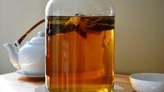 Чайный гриб: советы по применению от югорских травников