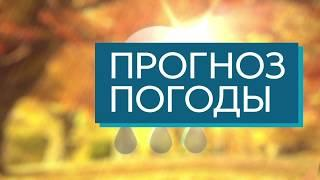 """""""Сегодня в Тамбове"""": выпуск от 29 ноября"""