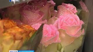 В преддверии 8 марта в Калининград пришло уже более 7 млн цветов