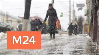 """""""Утро"""": пасмурную и слякотную погоду пообещали в Москве 2 апреля - Москва 24"""