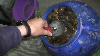 Почти тонну трепанга обнаружили пограничники в подпольном цехе во Владивостоке