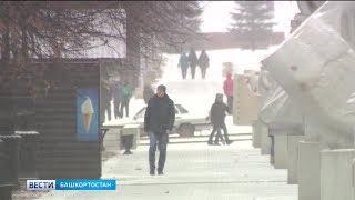 Башгидромет: порывы ветра и снегопад продолжатся