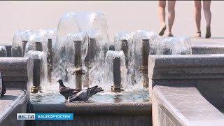 В Башкирию после похолодания вновь придет жаркая погода