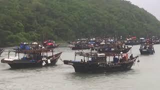 """Сотни корейских шхун спасаются от тайфуна """"Джеби"""" в Приморье"""