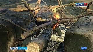 Жителей республики просят осторожней обращаться с огнём на природе