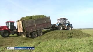 В Вологодской области идет заготовка кормов