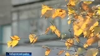 Гаровку передали муниципалитету