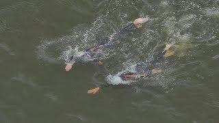 UTV. В Уфе 2 спортсмена проплыли по Белой 23 км, чтобы собрать деньги на благотворительность