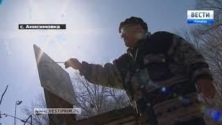 """""""Приморью - 80! Наша история"""": Три приморских живописца на пленэре в Анисимовкке"""