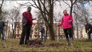 В Великом Новгороде прошел второй общегородской субботник