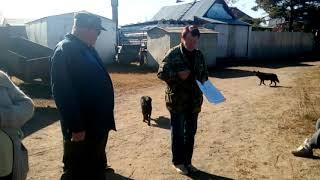 Хабаровск островитяне с Чумки спасают себя при помощи ТОСа окт 2018