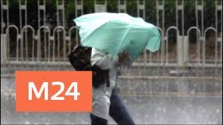 """""""Утро"""": шторм надвигается на столичный регион - Москва 24"""