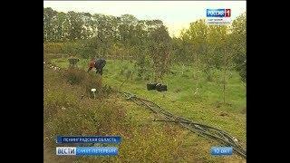 Вести Санкт-Петербург. Выпуск 14:20 от 10.10.2018