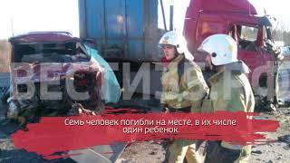 На трассе Вологда-Новая Ладога произошло страшное ДТП: 7 человек погибли