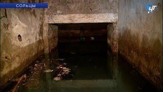 В Сольцах жители одного из домов несколько лет страдают от затопления подвальных помещений