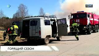 Второй лесной пожар в Коми ликвидирован