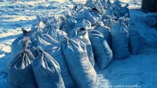 Три тонны угля украл из котельной биробиджанский студент(РИА Биробиджан)