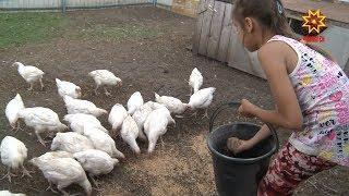 В республике продолжают бороться с птичьим гриппом.