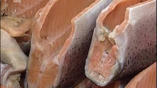 Рыба с Камчатки против авитаминоза. Где в Челябинске найти свежие морепродукты?
