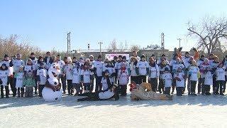 Волгоградская область присоединилась к всероссийской акции «День снега»
