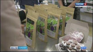 На севере Карелии начали выпуск ягодных таблеток