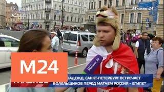 Санкт-Петербург стал центром притяжения болельщиков перед матчем Россия – Египет - Москва 24