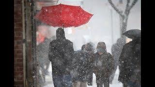 Погода на сегодня: снег с дождем, слабый гололед