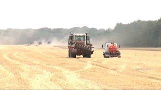 Больше 200 миллионов рублей компенсируют ставропольским аграриям на ГСМ