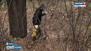 Каналы для отвода талых вод в Бийске очистят от мусора
