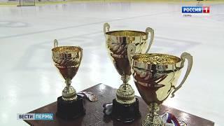 «Кубок медведей» выиграла пермская «Стая пираний»