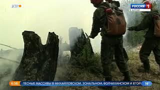 Грозы спровоцировали лесные пожары в Алтайском крае