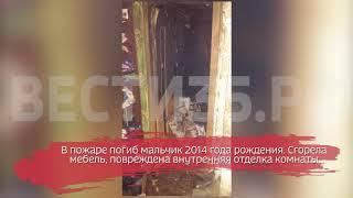Ребёнок погиб в пожаре в Шекснинском районе