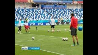 Неманья Матич VS Шердан Шакири: стадион «Калининград» в ожидании очередного матча